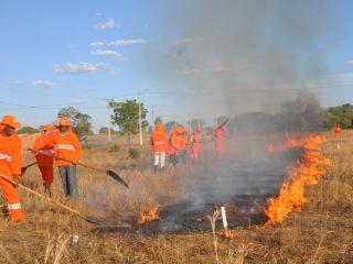 Defesa Civil de Porto Nacional ministra curso de combate a incêndios e contrata 10 brigadistas para o Município