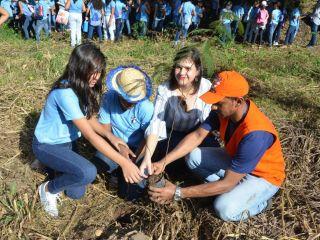 No Dia Mundial da Água, nascente do córrego das pombinhas em Porto Nacional recebe mutirão de limpeza e plantio de mudas