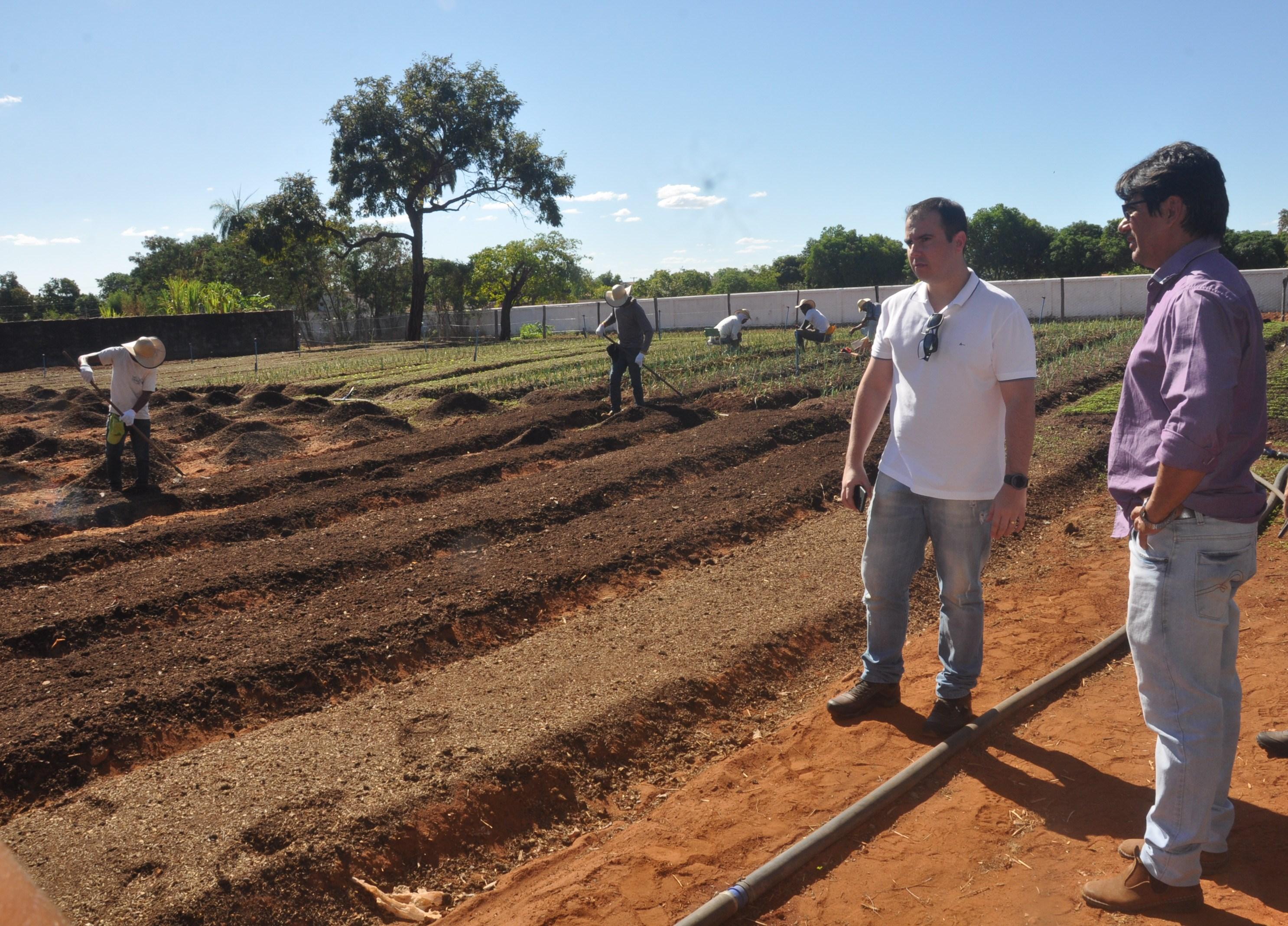 Horta Comunitária projeto da Prefeitura de Porto Nacional é avaliada pelo Sebrae e será inscrita no Prêmio Prefeito Empreendedor 3